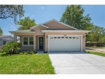 View 8506 N Blvd Tampa FL