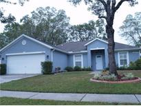 View 14801 Redcliff Dr Tampa FL