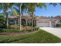 View 10246 Waterside Oaks Dr Tampa FL