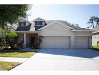 View 11718 Summer Springs Dr Riverview FL