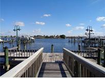 View 6462 Rubia Cir Apollo Beach FL