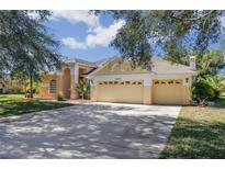 View 13432 3Rd Ave Ne Bradenton FL
