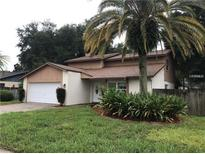 View 916 Springville Ct Tampa FL