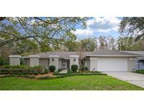 View 16116 Ancroft Ct Tampa FL