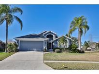 View 23129 Emerson Way Land O Lakes FL