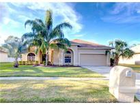 View 3916 Northridge Dr Valrico FL