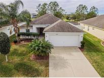 View 2243 Colville Chase Dr Ruskin FL