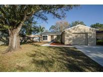 View 14013 Fullerton Dr Tampa FL