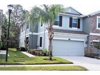 View 12515 Shirebrook Ct Tampa FL