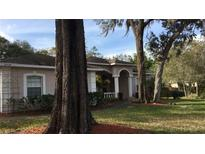 View 9914 Country Carriage Cir Riverview FL