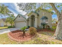 View 14512 Thornfield Ct Tampa FL