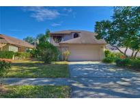 View 14505 Clifty Ct Tampa FL