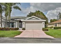 View 833 Mccallister Ave Sun City Center FL