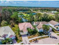 View 10423 Canary Isle Dr Tampa FL