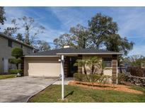 View 1005 W Powhatan Ave Tampa FL