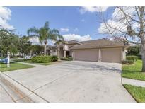 View 19211 Inlet Cove Ct Lutz FL