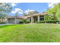 View 15908 Halsey Rd Tampa FL
