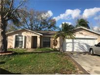 View 9213 Roundwood Ct Tampa FL