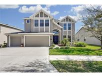View 19354 Yellow Clover Dr Tampa FL