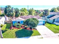 View 4705 Foxshire Cir Tampa FL