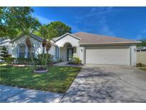View 11450 Cypress Park St Tampa FL