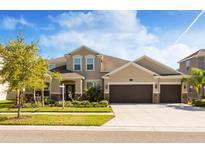 View 10513 Mistflower Ln Tampa FL