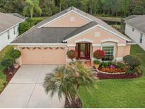 View 25318 Lexington Oaks Blvd Wesley Chapel FL