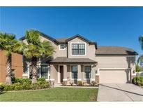 View 14233 Alistar Manor Dr Wimauma FL