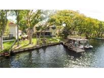 View 10408 Carroll Cove Pl Tampa FL