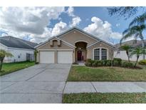 View 11708 Carrollwood Cove Dr Tampa FL