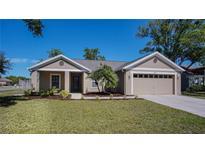 View 5809 Black Walnut Ct Tampa FL