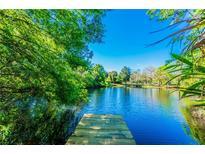 View 5409 Mountain Farm Ct Tampa FL