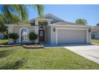 View 24304 Branchwood Ct Lutz FL