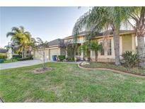 View 26503 Shoregrass Dr Wesley Chapel FL