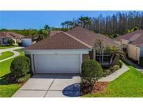 View 5546 Gallant Fox Ct Wesley Chapel FL