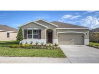 View 31570 Tansy Bnd Wesley Chapel FL