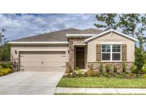 View 31662 Tansy Bnd Wesley Chapel FL