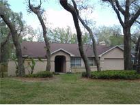 View 2766 Buckhorn Oaks Dr Valrico FL
