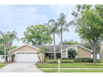 View 14809 Hadleigh Way Tampa FL