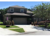 View 14302 Moon Flower Dr Tampa FL