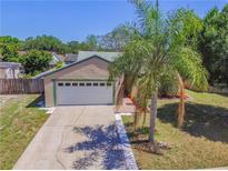 View 11003 Ashbourne Cir Tampa FL