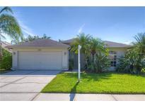 View 13417 Eudora Pl Tampa FL