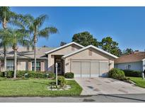 View 934 Villeroy Greens Dr # 11 Sun City Center FL