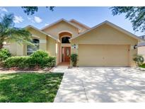 View 10123 Somersby Dr Riverview FL