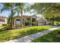 View 20647 Longleaf Pine Ave Tampa FL