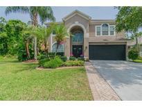 View 12520 Blazing Star Dr Tampa FL