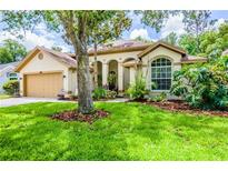 View 6421 Weatherwood Cir Wesley Chapel FL