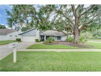View 14706 Dartmoor Ln Tampa FL