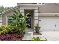 View 8528 Canterbury Lake Blvd Tampa FL