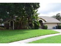View 1602 Palace Ct Valrico FL